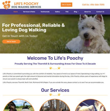 Website Design Brampton