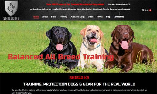 eCommerce Website Design  Brampton